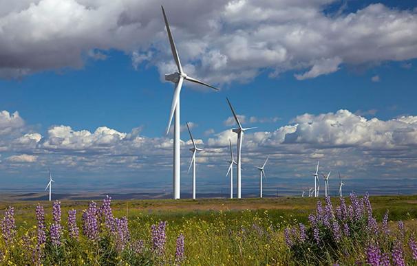 Parque eólico de Iberdrola en EEUU