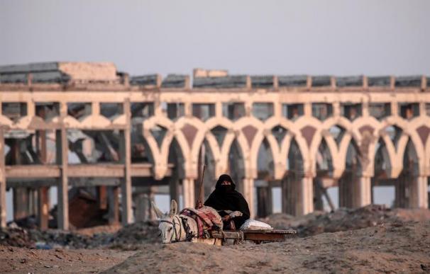 Franja de Gaza, mujer palestina