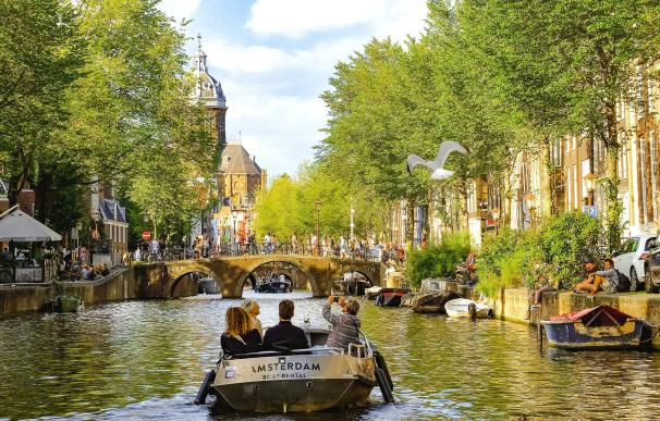 Ámsterdam (6 empresas)