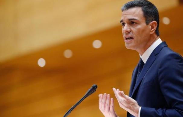Fotografía del presidente del Gobierno, Pedro Sánchez / EFE