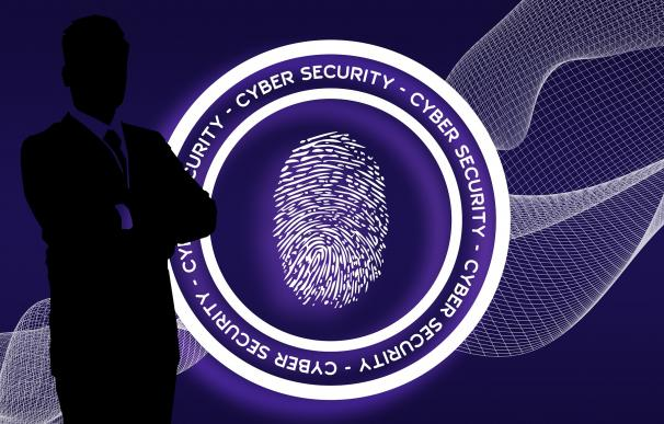 Los ciberataques obligan a España a contratar un rastreador de hackers. /Pixabay