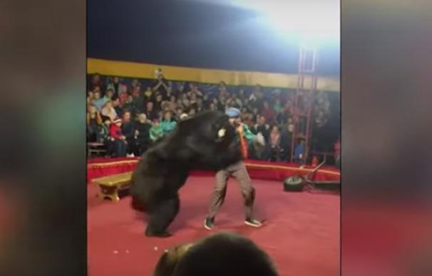 Fotografía de un oso atacando a su entrenador en un circo de Rusia.
