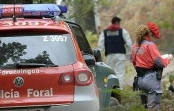 Agentes de Policía Foral en imagen de archivo. /EFE