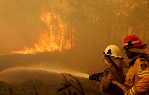 Más de 80 incendios activos