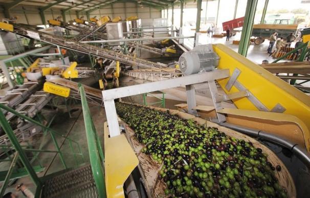 Cooperativas agro-alimentarias denuncia la decisión de Bruselas sobre el almacenamiento privado de aceite