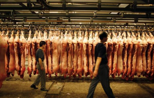 España aumentó sus exportaciones de carne de cerdo a China un 300 por ciento