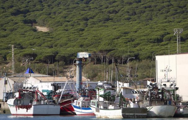 Comienza la sexta ronda de negociación del acuerdo pesquero Marruecos-UE