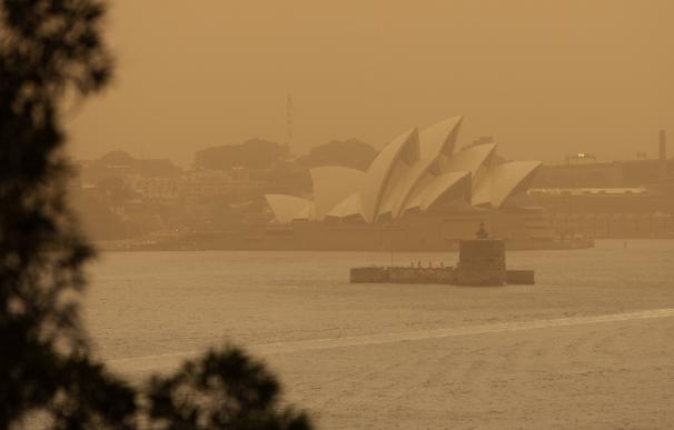 Sídney, envuelta en una capa de humo por los incendios