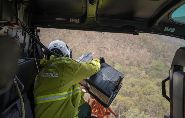 Australia lanza desde helicópteros comida a animales afectados por incendios