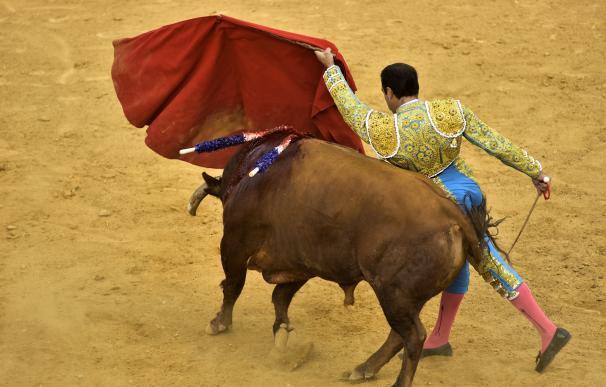 Imagen de archivo de un torero
