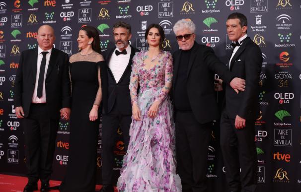 Pedro Almodóvar y el equipo de 'Dolor y gloria'