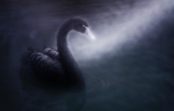 Gestores y analistas descartan que el coronavirus sea el nuevo 'Cisne Negro'