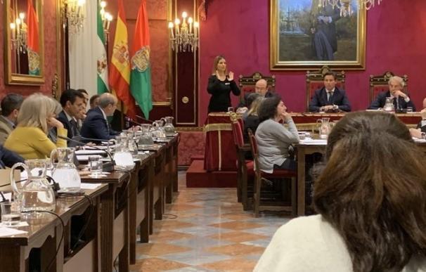 Pleno de febrero del Ayuntamiento de Granada