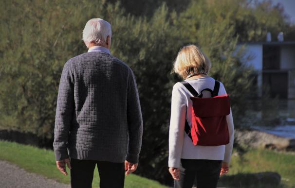 Planes de pensiones: cuánto hay que aportar y cuáles son los más rentables