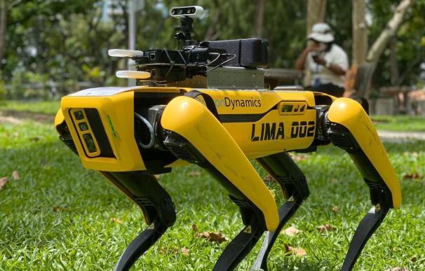 El perro robot en Singapur