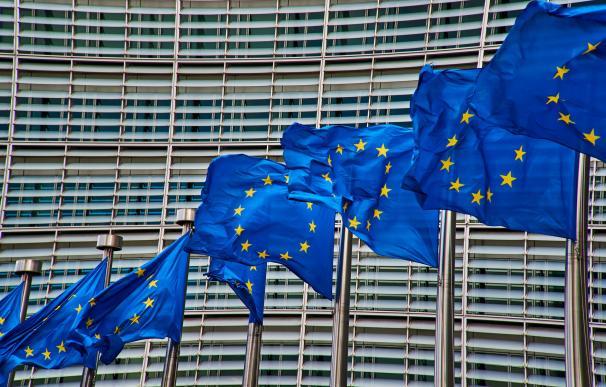 Bruselas (5 empresas)
