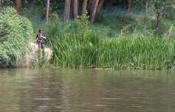 Continúa la búsqueda del cocodrilo en Valladolid