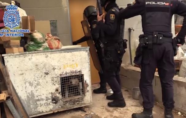 Cae red narcotráfico Madrid