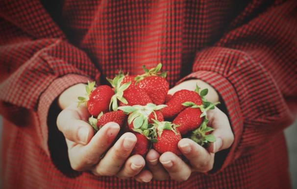 Mujer joven con fresas en las manos