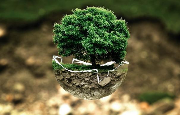Los bonos verdes representan la mitad de las emisiones sostenibles o ISR.