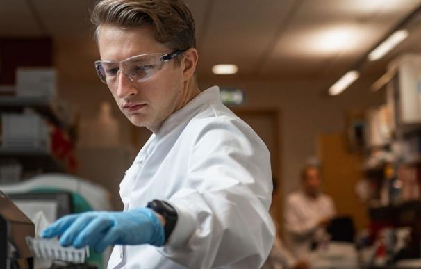 Los investigadores de Oxford estudiaron a más de 12.000 profesionales sanitarios