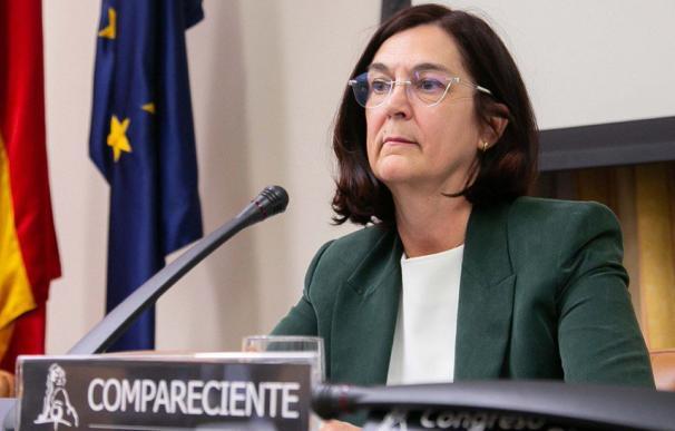 Cani Fernández Competencia CNMC