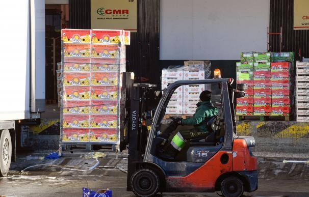 Un operario descargar un camión con frutas en los hangares de Mercamadrid que trata de recuperar la actividad.