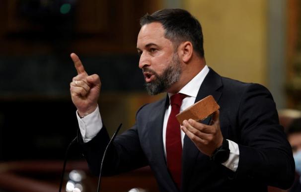 Abascal presenta un adoquín en el Congreso