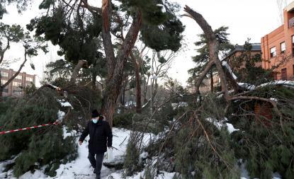 """Madrid da el paso y solicita al Gobierno la declaración de """"zona catastrófica"""""""